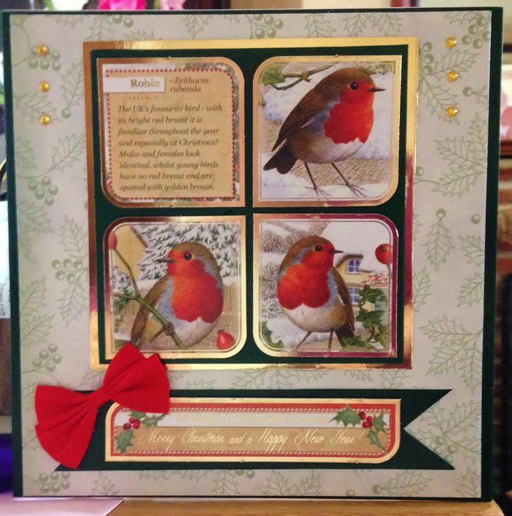 Christmas Card (143) 8 inch x 8 inch - Hunkydory 'Festive Birds of Britain'