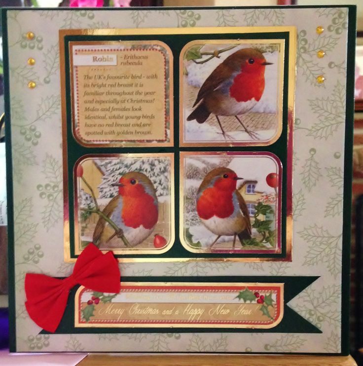 Christmas Card (143) 8 inch x 8 inch - Hunkydory 'Festive Birds of Britain'
