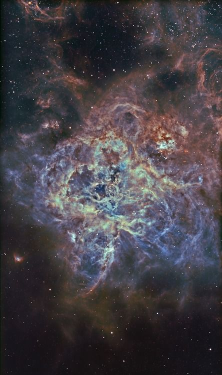 """astronomicalwonders:  A Mosaic of the Tarantula Nebula """"The Tarantula Nebula (also known as 30 Doradus, or NGC 2070) is an H II region in the Large Magellanic Cloud (LMC). It was originally thought to be a star, but in 1751 Nicolas Louis de Lacaille recognized its nebular nature. The Tarantula Nebula has an apparent magnitude of 8. Considering its distance of about 49 kpc (160,000 light-years), this is an extremely luminous non-stellar object. Its luminosity is so great that if it were as…"""