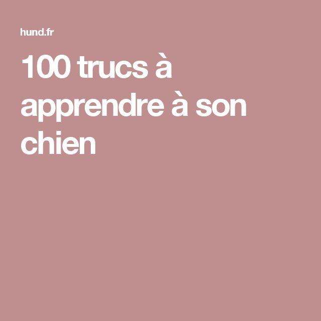 100 trucs à apprendre à son chien