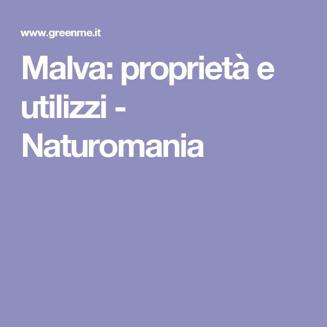 Malva: proprietà e utilizzi - Naturomania
