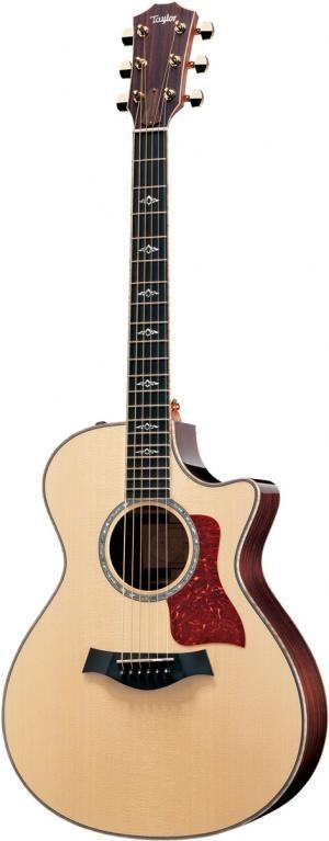 Taylor Guitar...hey, a girl can dream...
