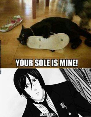 Black Butler: LOL can't stop laughing! >.< And Sebby's faaaaceeeee