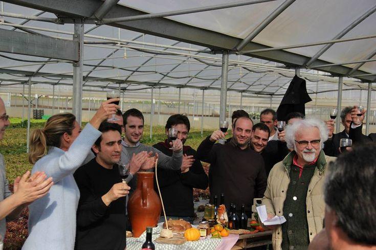 La Sbecciatrice, Il Giardino Segreto, il Frantoio Mastroianni e altri a Linea Verde del 26 Gennaio 2014