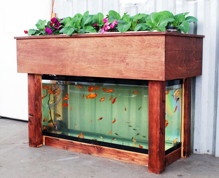 Aquaponics Garden Design backyard aquaponic gardening system Kijani Grows Will Bring Small Internet Connected Aquaponics Gardens To Schools