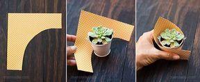 Mini Succulent Favors für eine Babyparty – Lívia Oliveira   – Bastelarbeiten