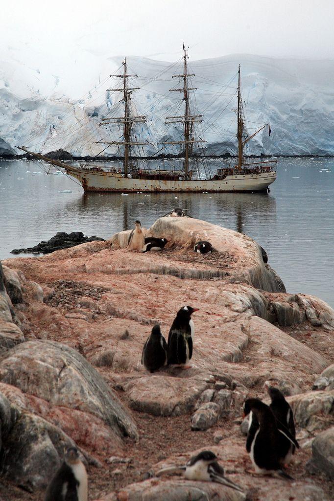Port lockroy antarctica by kate mckenna on flickr for Port lockroy