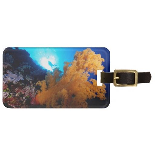 Awesome luggage tag featuring a diver silhoutted against the sun with a beautifully lit soft coral in the foreground. #fish #coral #tropicalfish #reef #scuba #animals #marine #australia #luggage #greatbarrierreef
