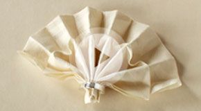 website for folding napkins. As if we need a whole website?