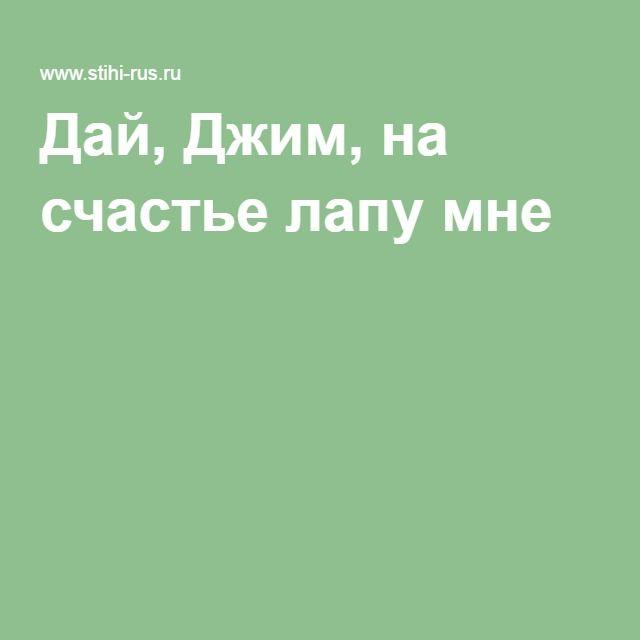 """Сергей Есенин """"Собаке Качалова"""" (""""Дай, Джим, на счастье лапу мне..."""")"""