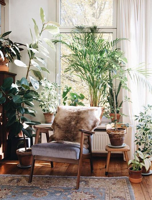 Cozy brown armchair with a brown fur meets urban jungle and boho chic. That's where we would love to relax!