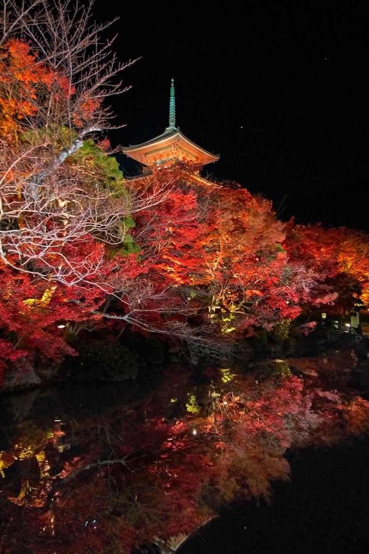 Night Pagoda, Kiyomizu Temple, Kyoto, Japan