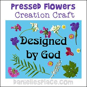 17 best images about creation bible craft for sunday for Crafts for children s church