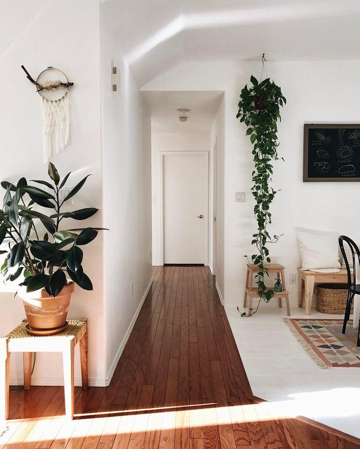 Hanging plant inside - love
