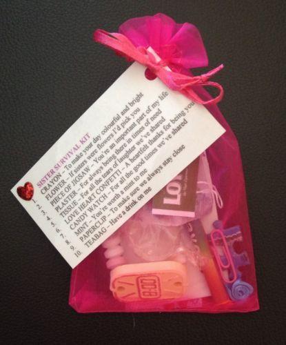 Sister Survival Kit Gift For Sister Birthday Christmas Stocking Filler Novelty in Home, Furniture & DIY | eBay