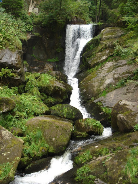ALEMANIA: La Selva Negra   - Explore the World with Travel Nerd Nici, one Country at a Time. http://TravelNerdNici.com