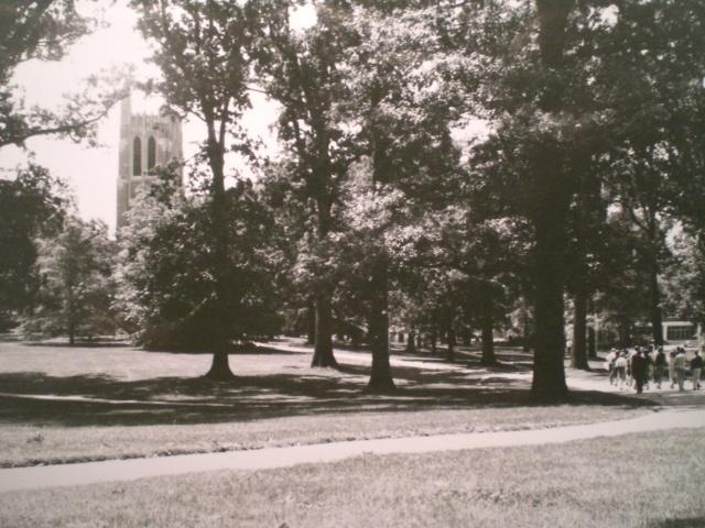 Michigan State University, 1965-67