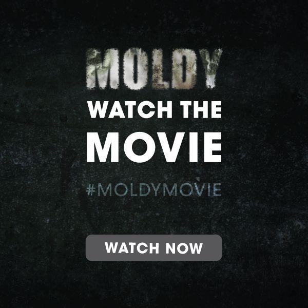 The Hidden Dangers of Toxic Mold with Dave Asprey — Daniel Vitalis