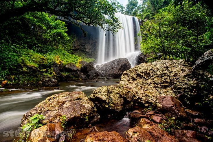 We were surrounded by no fewer than 12 epic waterfalls on the #AthertonTablelands recently. I was like a kid in a candy shop!! This one is of Zillie Falls. The hike down was more like a mud slide than a walking path, but the dirty legs and arms was well worth the journey.