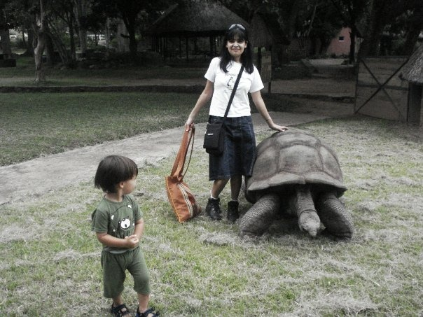 with the giant tortoise that's over a century old! Zim [Feb 2010]