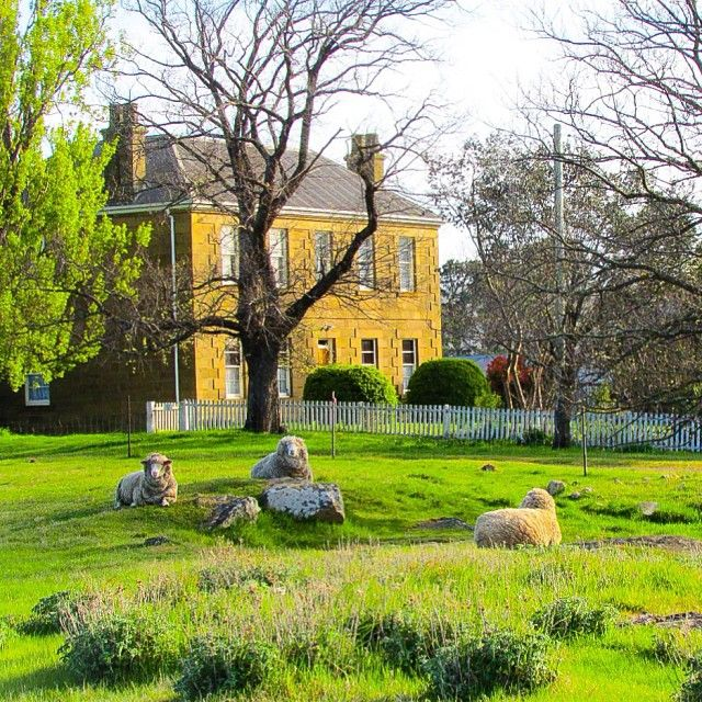 Morningtime in Oatlands. Oatlands is located between Hobart and Lauceston on the Midland Highway and is considered to have the largest collection of sandstone buildings in a village setting in Australia. #oatlands #tasmania #discovertasmania