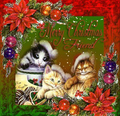 Cats Merry Christmas Gif