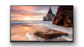 Should I buy the Sony Bravia KDL40RE453 Full HD TV on Black Friday?