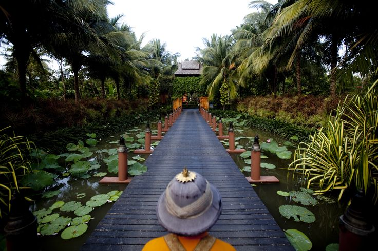 Discover unique, indigenous luxury at Anantara Vacation Club Resorts.. Koh Samui and its coconut trees, Phuket and its white beaches, Bangkok the metropolis of the ancient Siam, and Bali and its rich blend of traditions..