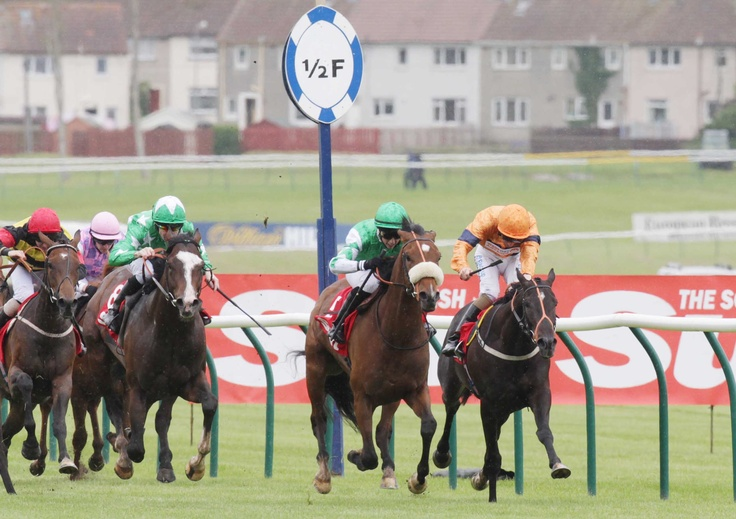 Ardmay, ridden by Amy Ryan wins the Scottish Sun on Sunday Handicap 2012 at Ayr Racecourse