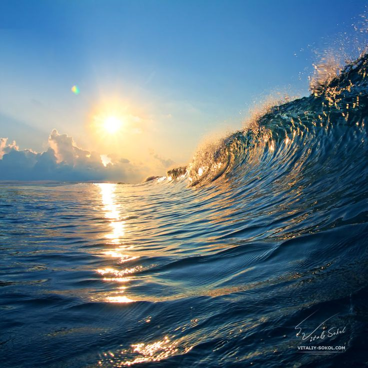 171 best images about The wave and Shore on Pinterest ...