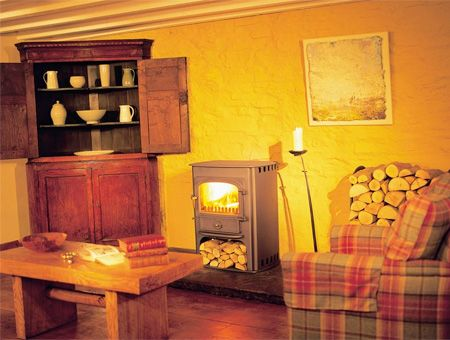 Clearview Solution 500 multi fuel / wood burning stove