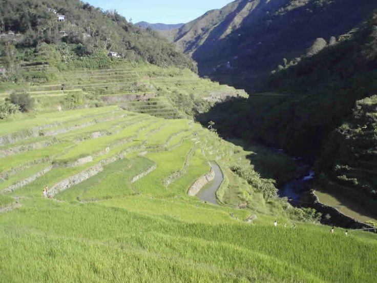 Vista de las Terrazas de arroz de Banaue Filipinas