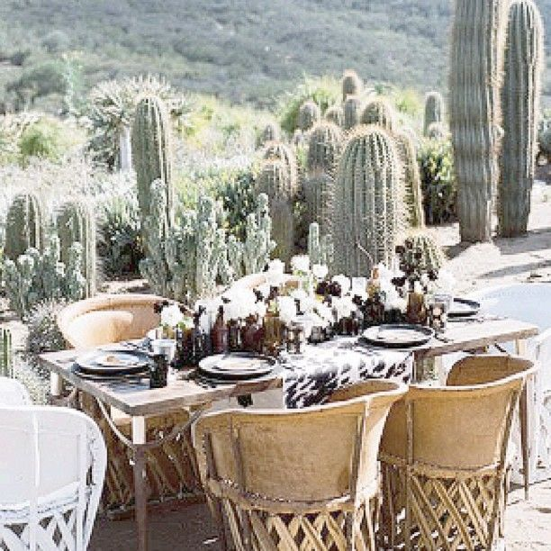   C /\ C T U S • P /\ R T Y    #cactus #outdoor #dining #southwestern #desertgarden #deserthome #arizonaboho #cactusgarden #pinterest #boholiving #homeinspo #mystyle #luxeliving  #gypsyluxe #gypsy #gypsystyle #gypsyliving #boho #bohochic #bohemian #boholuxe #gypset #gypsystyle #gypsylife #gypsydecor #boholuxe #bohostyle #bohodecor #homestyling #gypsyhome #bohohome #gypsyinspo