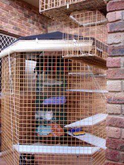 Cat Enclosure Cat Run - Outdoor