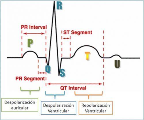 Eletrocardiograma. Existem numerosas formas de utilização do eletrocardiograma de 12 derivações na prática clínica, pois o método é capaz de refletir alterações primárias ou secundárias aos processos do miocárdio, como nos casos de doenças das artérias coronárias etc. via @minenfermagem