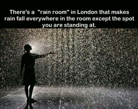 Rain Room!!