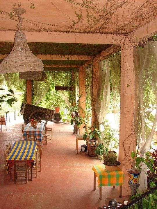 17 best puerto vallarta airport pvr images on pinterest - Puerto vallarta botanical gardens ...