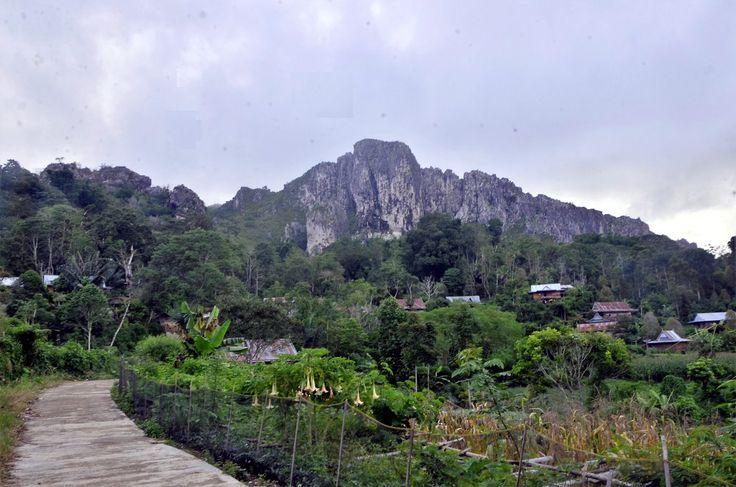 Wilayah adat Patongloan di Desa Patongloan, Kecamatan Baroko, Kabupaten Enrekang, Sulawesi Selatan, yang terdiri dari bukit dan lembah, memiliki kondisi yang ekstrim, yang menyulitkan dalam proses pemetaan partisipatif. Foto: Wahyu Chandra