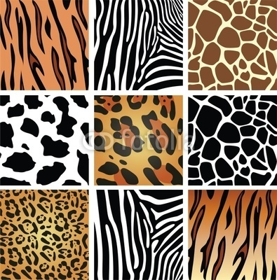 My daughter wants an animal print room!