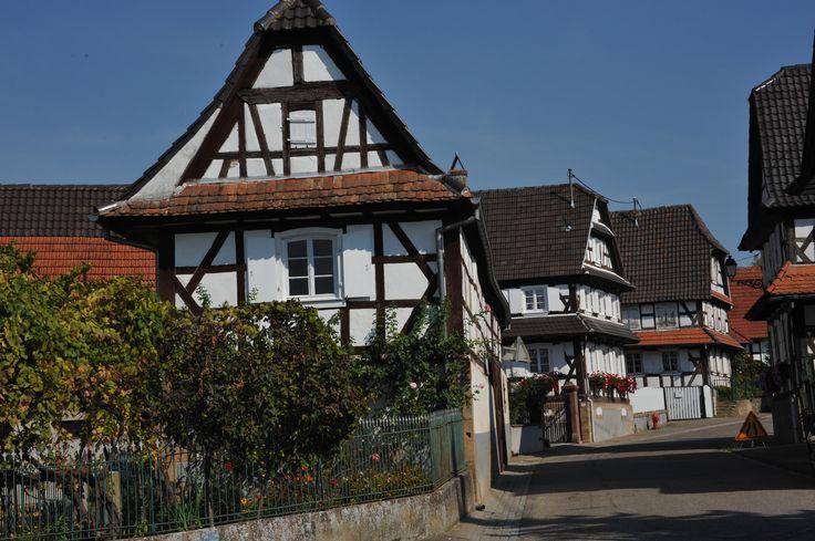 Hunspach     (Bas-Rhin Alsace)  Colombages sur les murs blancs étincelants, toits à pans coupés, géraniums aux fenêtres... Les imposantes demeures d'Hunspach, typiques de la région de Wissembourg s'alignent le long de la rue principale du village. Certaines d'entre elles ont gardé ce qui fait la particularité d'Hunspach : les viotres à verre bombé qui permettent à ses habitants de voir sans être vus...