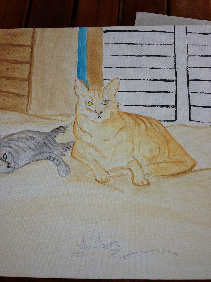 Hamakua house cats.
