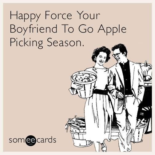 Apple picking season, Your boyfriend and Boyfriends on ...
