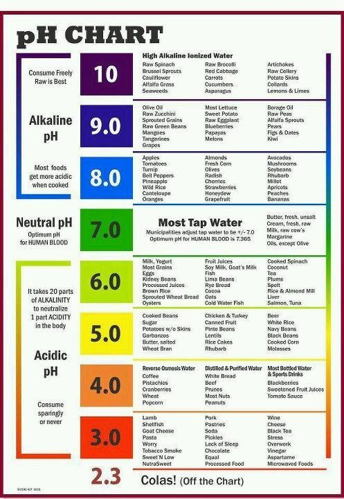 PH chart - Alkaline vs Acidic foods - better to have more alkaline...