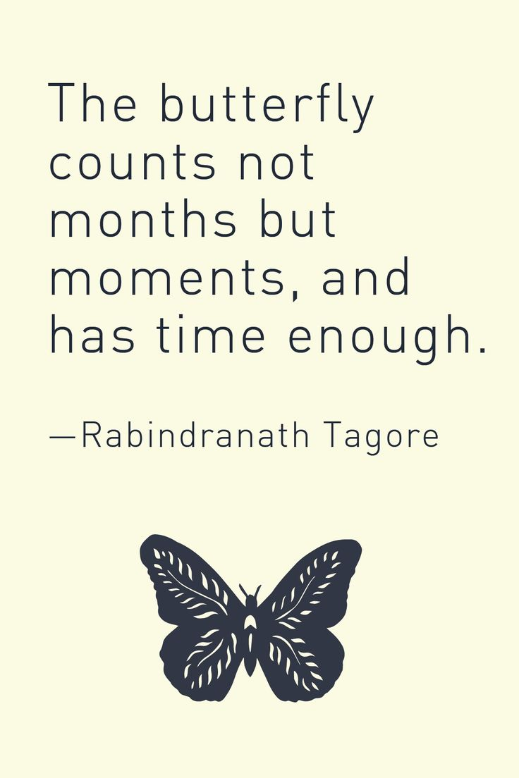 The butterfly counts not months but moments, and has time enough. — Rabindranath Tagore
