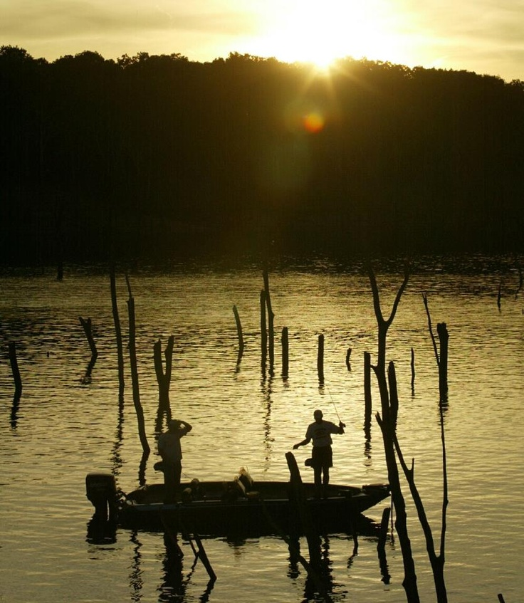 1000 images about fishing on pinterest for Fishing lakes in missouri