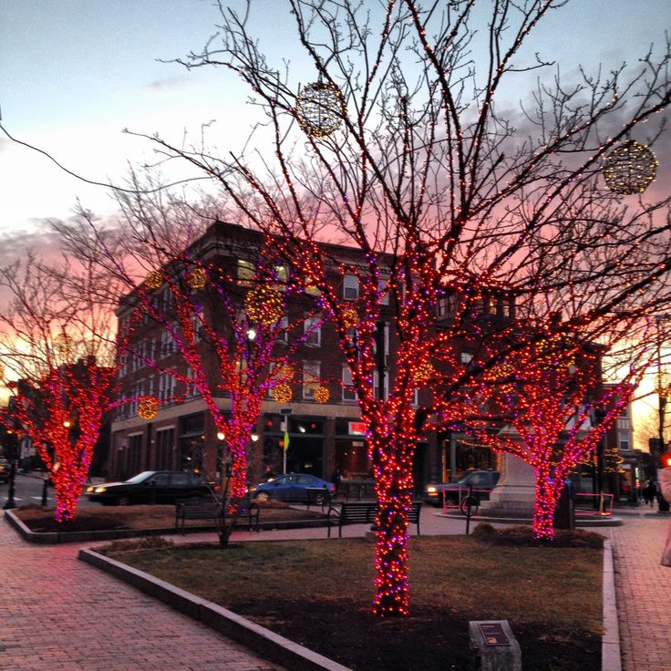 Fixing Up An Old New Englander In Maine: December Lights In Portland, Maine.