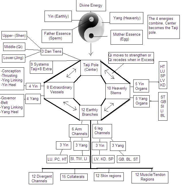 Discrepancies between Traditional Chinese Medicine meridians vs. Taijiquan and Qigong channels | Tai Chi Fighter's Blog