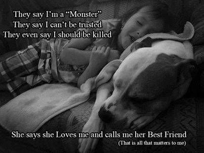 "We wouldn't give up our pit bull mix for anything in the world. She's our little sweetheart : ) Anyone who feels otherwise about pitbulls needs to rethink their opinion. This quote in the picture is a prime example of the stereotype that has been created for them. It's all in how they're raised. Any dog will be mean and ""vicious"" with the wrong owners. Raise them right and don't be so afraid!"