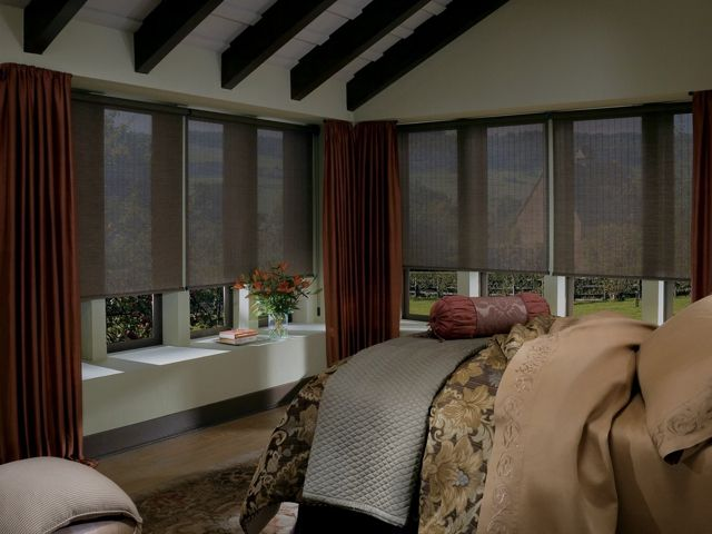 Designer Window Shades 19 best oval window ideas images on pinterest | window ideas