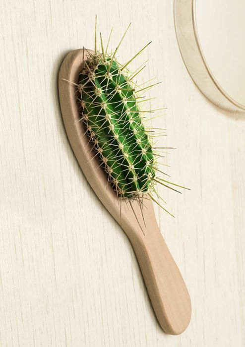 Hair brush, still life | Murat Suyur